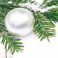 Weihnachtskugel an Tannenzweig